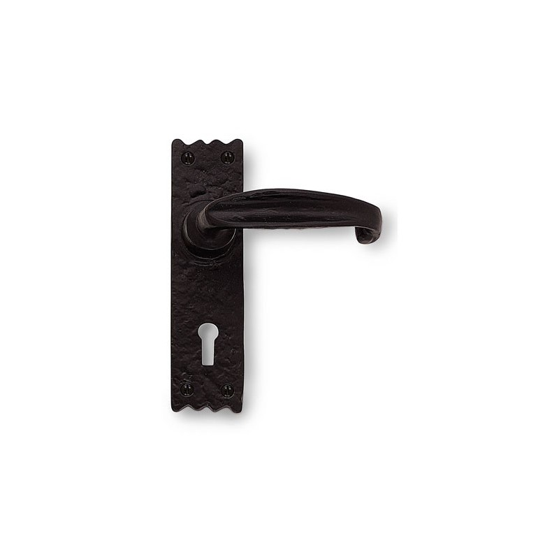 Ironmongery Door Furniture Integra